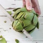cutting fresh artichokes