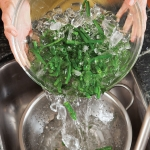 draining green beans in a colander