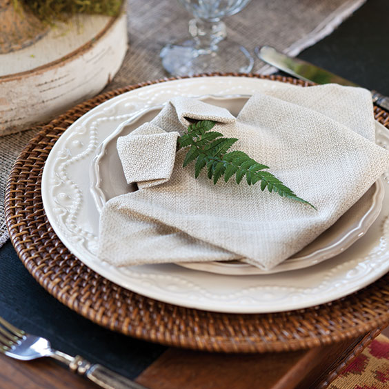 place setting with napkin folded into a shirt