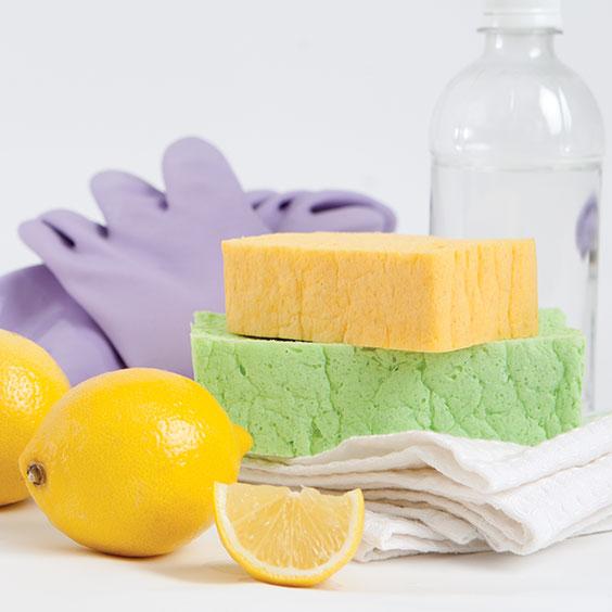 gloves, sponges, lemon, and vinegar for spring cleaning