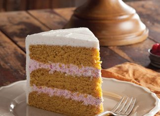 Pumpkin Spice Cake with Cranberry Mousse Filling
